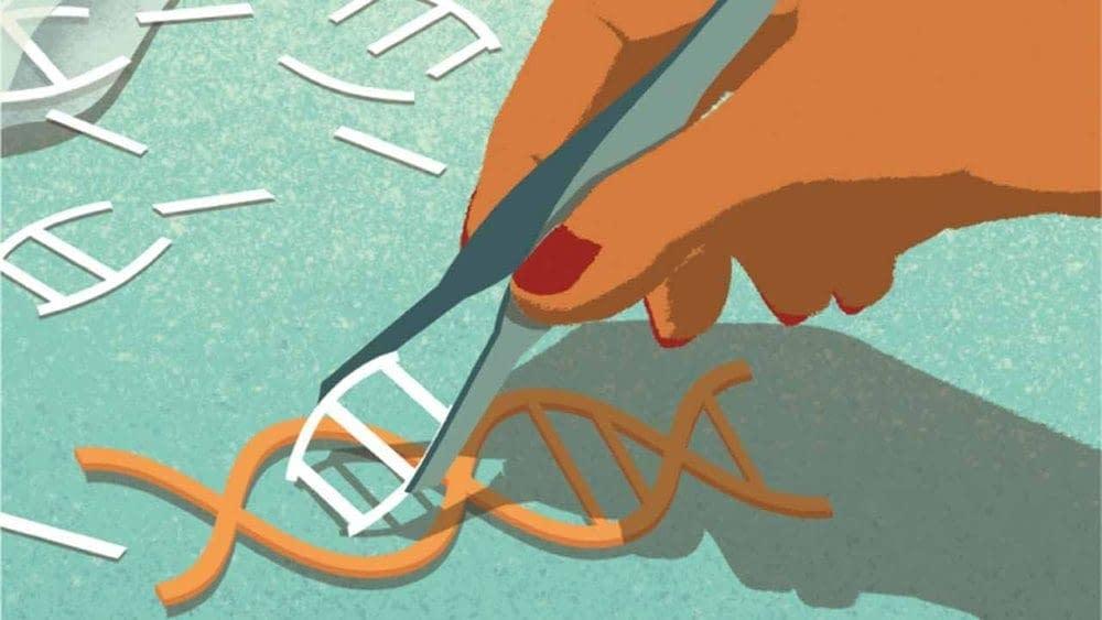The CRISPR Craze