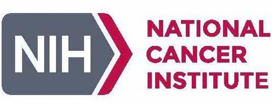 National Cancer Institute's ENRICH Webinar Led by Ellen Matloff